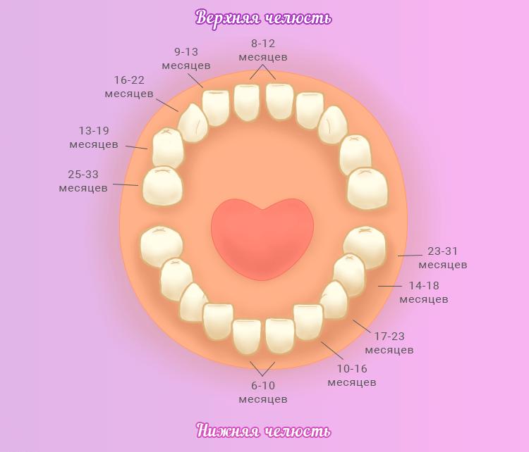 Когда режутся первые зубы у ребенка. Признаки прорезывания
