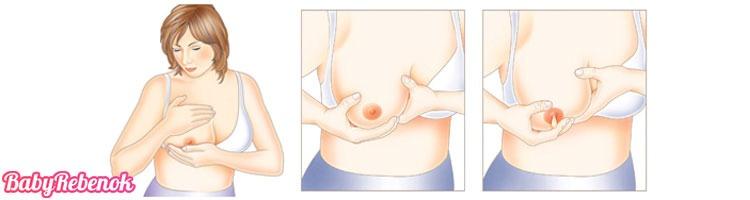Как правильно сцеживать грудное молоко руками?