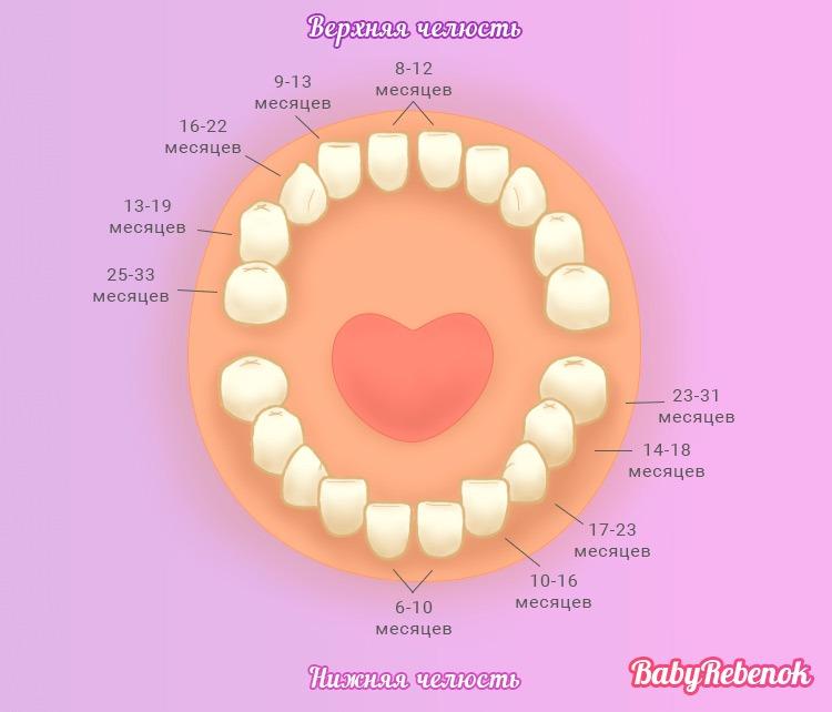 Прорезывание зубов у детей: симптомы, признаки, сроки, схема